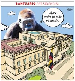 Al orangután le hicieron el feo...